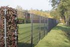 Panel ogrodzeniowy 2D ocynkowany (3)