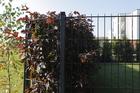 Panel ogrodzeniowy 2D ocynkowany (1)